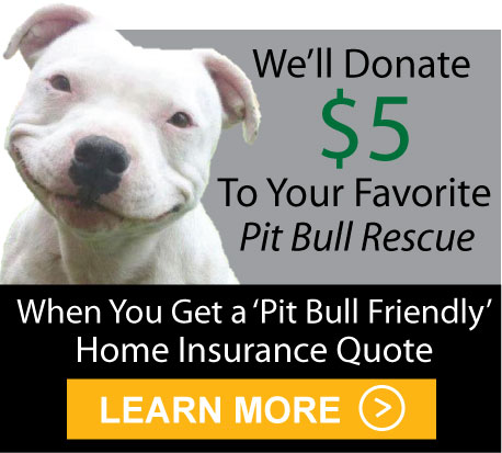 Pit Bull Friendly Home Insurance